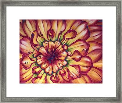 Dahlia Rainbow Framed Print