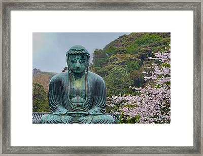 Daibutsu Buddha Framed Print