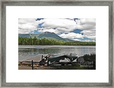 Daicey Framed Print