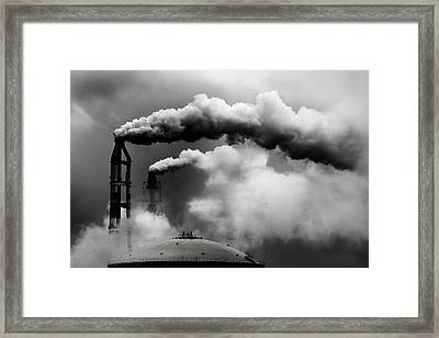 Daily Inspection Framed Print