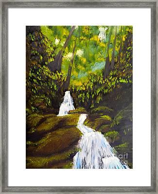Daintree Natural Park Framed Print
