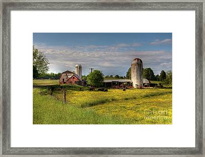 Dairy Land  Framed Print by Benanne Stiens