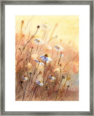 Daisies At Sunset - Impressionism Framed Print by Georgiana Romanovna