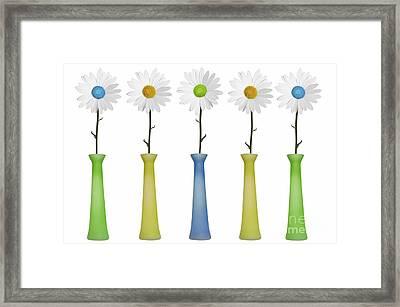 Daisies Framed Print by Diane Diederich