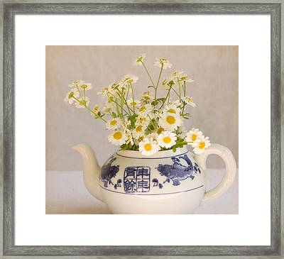 Framed Print featuring the photograph Daisies In A Teapot by Peggy Collins