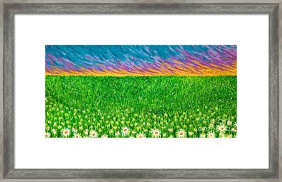 Daisies In The Park Framed Print by Jo-Anne Elniski
