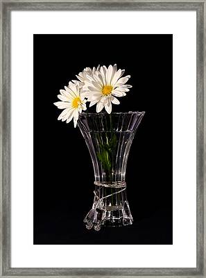 Daisies In Vase Framed Print by Tracie Kaska
