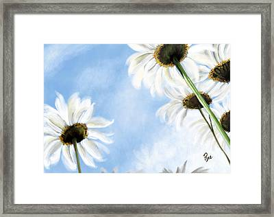 Daisies Framed Print by Maria Schaefers