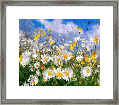 Daisies On A Hill - Impressionism Framed Print