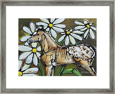 Daisies On My Britches Framed Print