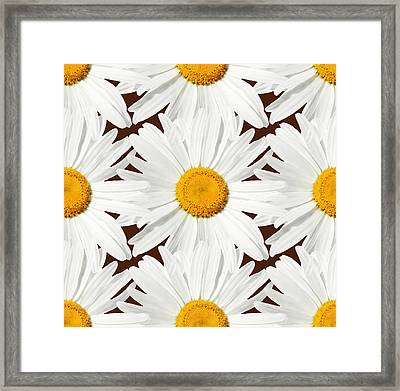 Daising - 03 Framed Print by Variance Collections