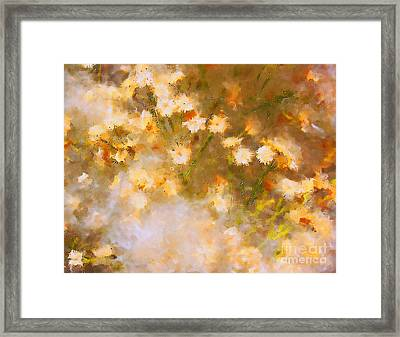 Framed Print featuring the photograph Daisy A Day 21 by Julie Lueders