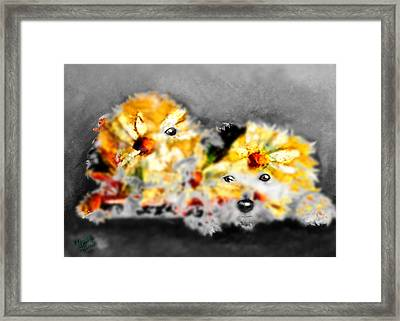 Daisy Animal Framed Print by Marcello Cicchini