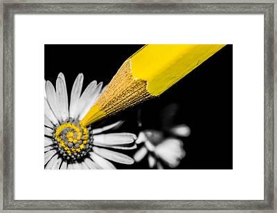 Daisy Art Framed Print by Ian Hufton