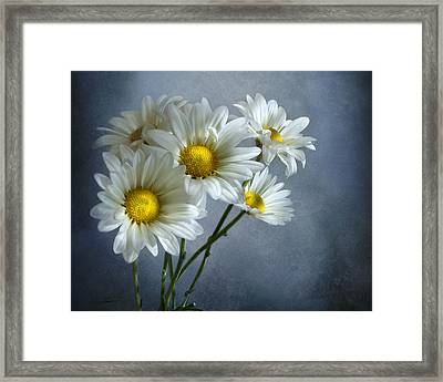 Daisy Bouquet Framed Print by Ann Lauwers
