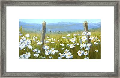 Daisy Dance Framed Print