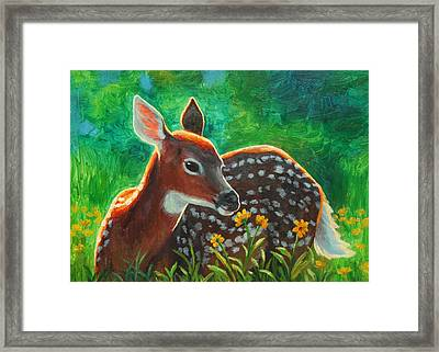 Daisy Deer Framed Print by Crista Forest
