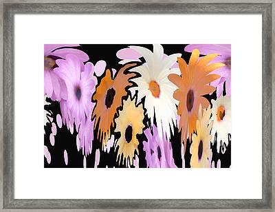 Daisy Falls Framed Print