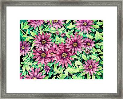 Daisy Flowers Framed Print