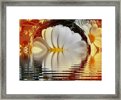 Daisy Fractal Framed Print by Nancy Pauling