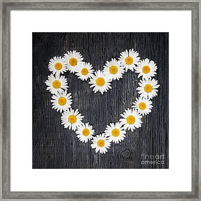 Daisy Heart Framed Print by Elena Elisseeva