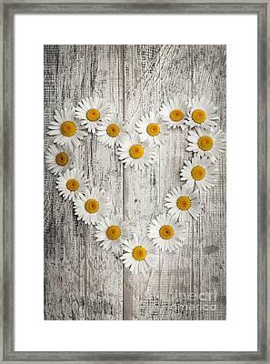Daisy Heart On Old Wood Framed Print