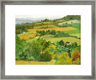 Daisy Hollow Dryden New York Framed Print by Ethel Vrana