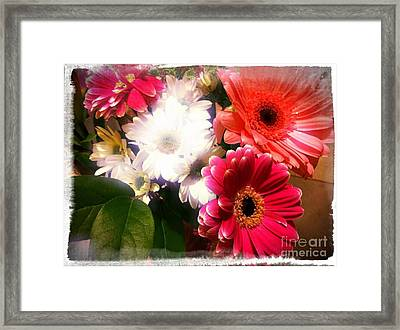 Daisy January Framed Print