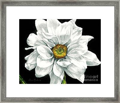 Daisy Likes To Dance Framed Print by Shana Rowe Jackson