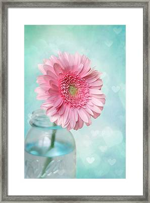 Daisy Love Framed Print