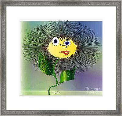 Daisy May Framed Print by Iris Gelbart
