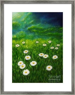Daisy Meadow Framed Print by Veikko Suikkanen