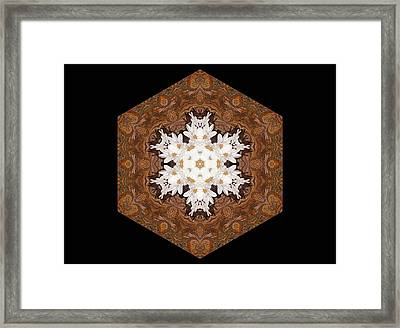 Daisy Pattern Mandala - S0125 Framed Print by Variance Collections