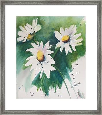 Daisy Print Framed Print