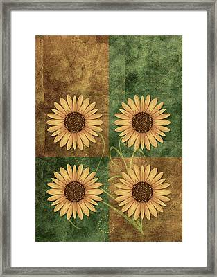 Daisy Quatro V12c03 Framed Print by Variance Collections