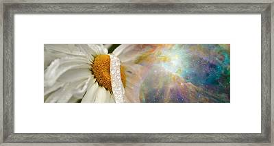 Daisy With Hubble Cosmos Framed Print by Panoramic Images