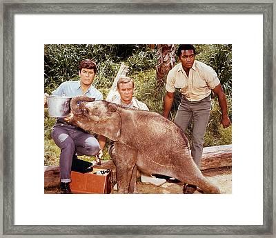 Daktari  Framed Print by Silver Screen