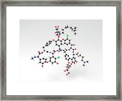 Dalbavancin Antibiotic Molecule Framed Print by Indigo Molecular Images