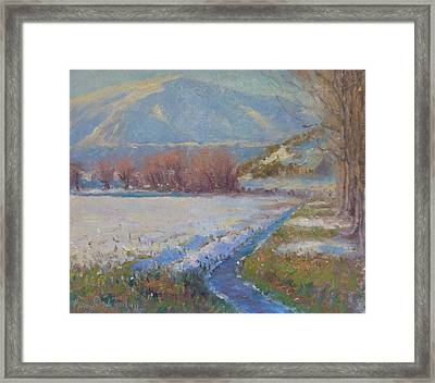 Dalefield. Queenstown Nz. Framed Print by Terry Perham