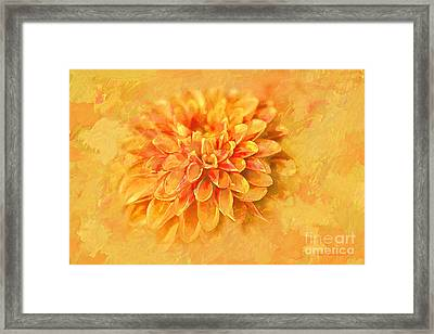 Framed Print featuring the photograph Dalhia Abstract by Linda Blair