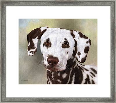 Dalmatian Painting Framed Print by Rachel Stribbling