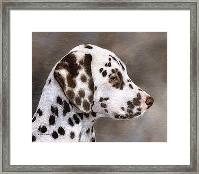 Dalmatian Puppy Painting Framed Print by Rachel Stribbling
