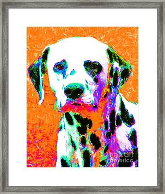 Dalmation Dog 20130125v2 Framed Print