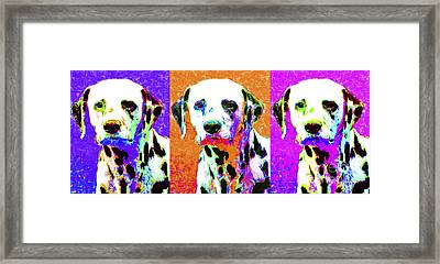 Dalmation Dog Three 20130125 Framed Print by Wingsdomain Art and Photography