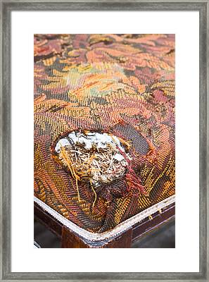 Damaged Upholstery Framed Print by Tom Gowanlock