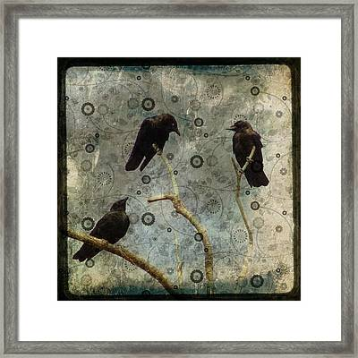 Damask Of Crow Framed Print