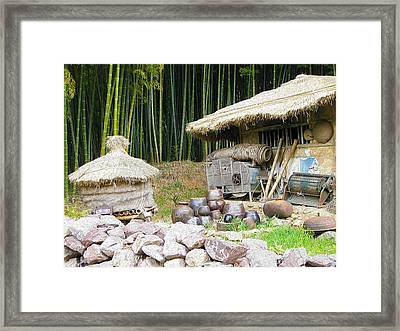 Damyang Bamboo Forests Framed Print