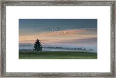 Dance In The Clouds Framed Print