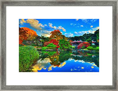 Dance Of Colors Framed Print by Midori Chan