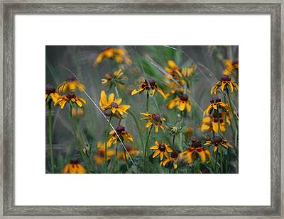 Framed Print featuring the photograph Dance Of Flowers by Susan D Moody